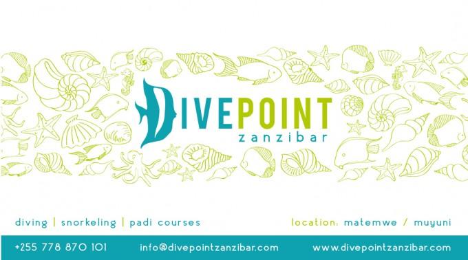 Identyfikacja wizualna – Divepoint